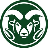 CSU Youth Camps