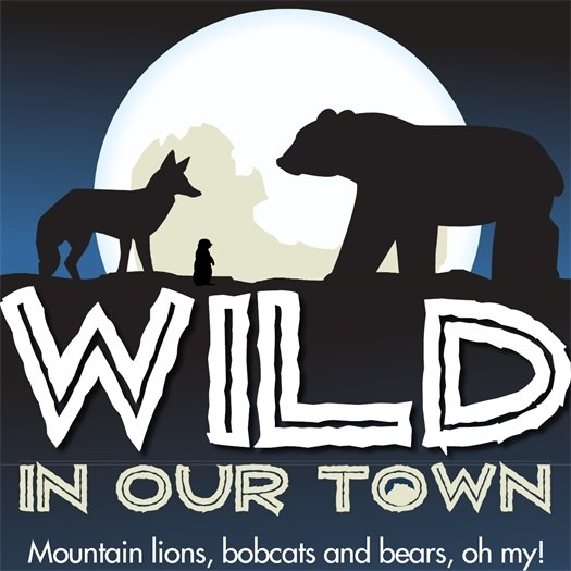 Wild in our Town