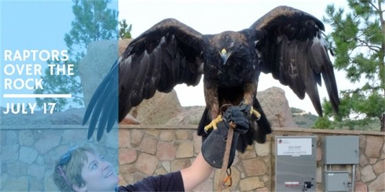 Raptors Over the Rock - Free environmental education program on Tuesday, July 17