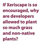 How are developers held to xeric design?