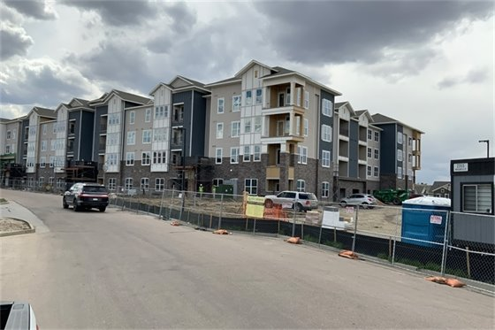 Photo of Talus Flats project site.