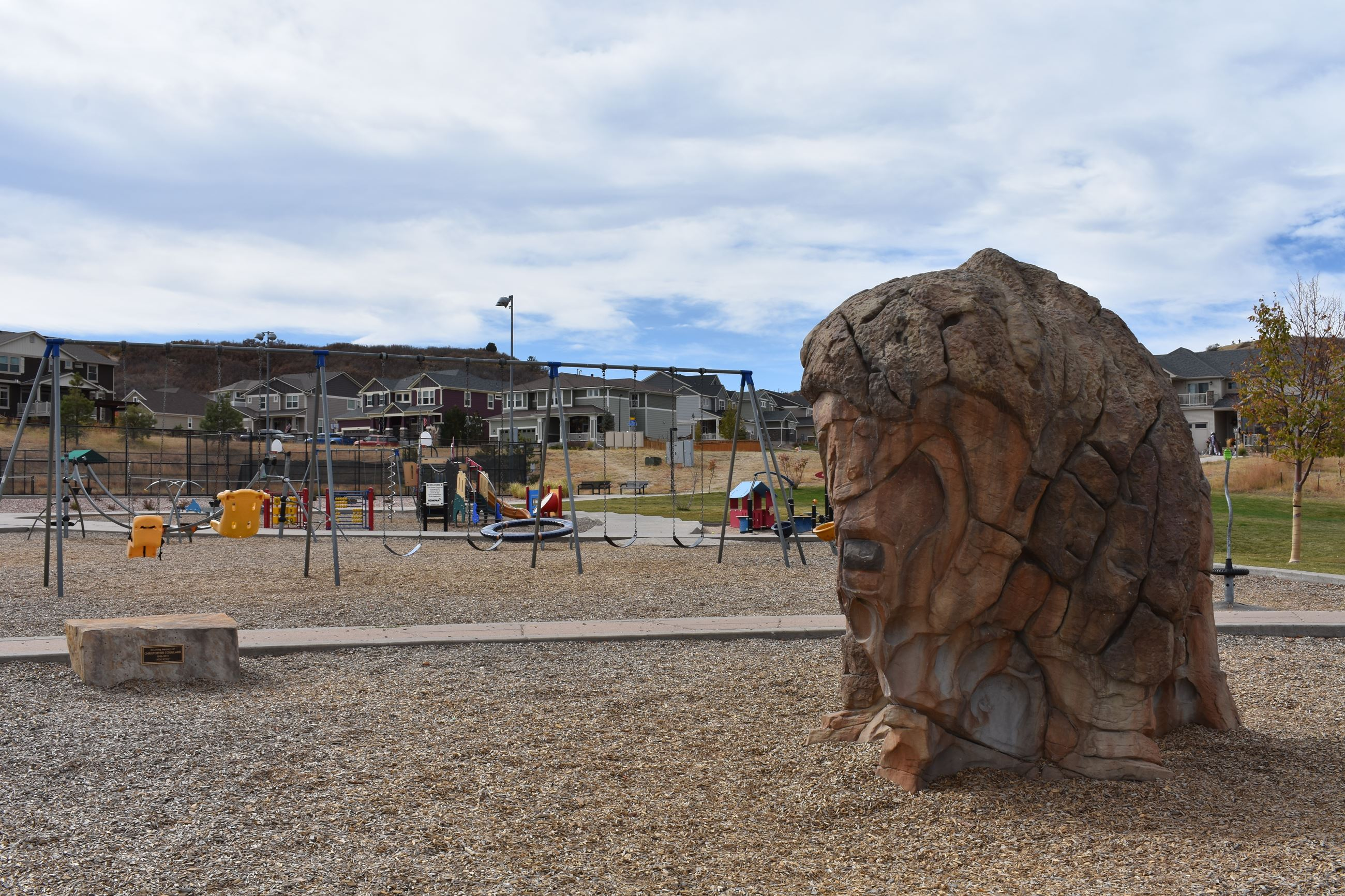 Bison and playground