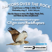 Raptors Over the Rock