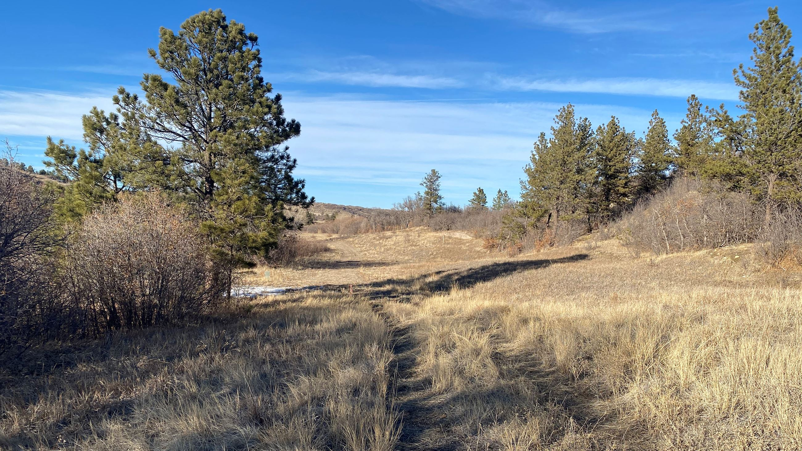 view from the new trail segment